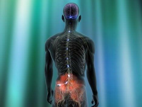 Нейропатическая боль и нейростимуляторы