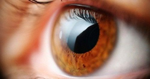 5 признаков, что ваши глаза требуют внимания