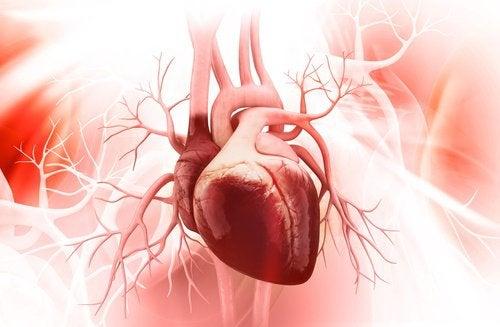 Смузи для здорового сердца