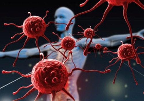 Папайя укрепляет иммунную систему