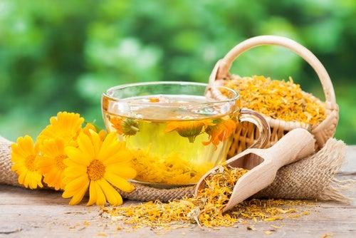 Чай с календулой поможет справиться с мигренью