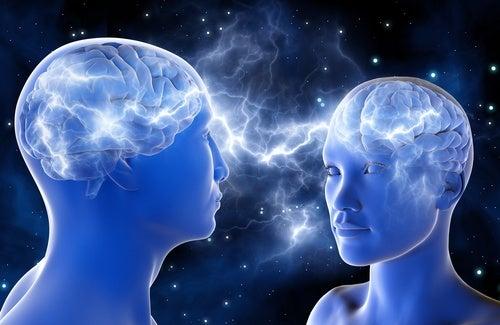 Мозг и секрет привлекательности