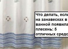 Что делать, если на занавесках в ванной появилась плесень