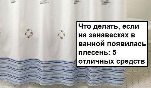 Что делать, если на занавесках в ванной появилась плесень: 5 отличных средств