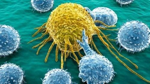 Рак Передается по наследству или есть другие факторы