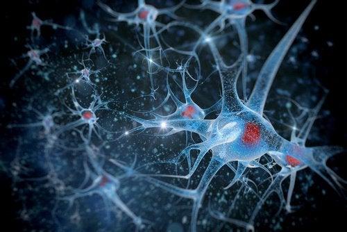 Рукоделие и здоровье мозга