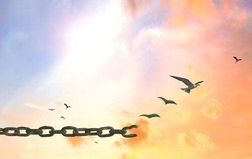 Синдром пластилинового человека не позволяет тебе обрести свободу