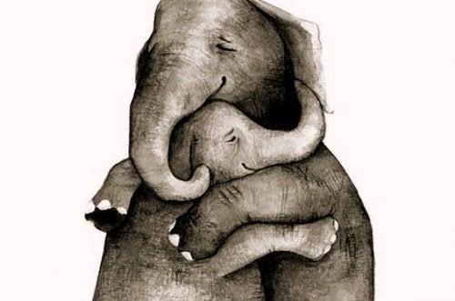 Самое ценное в нашей жизни - это любовь