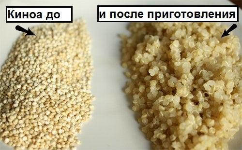 Киноа до и после приготовления