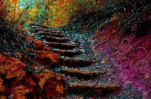 5 секретов, как преодолеть себя и подняться по лестнице жизни