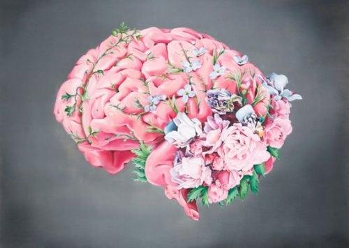 Мозг и страдания