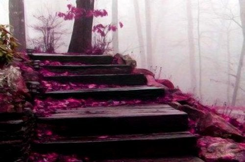 Лестница с цветами