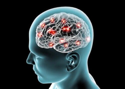 Корица влияет на наш мозг