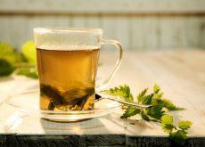 Анемия и чай из крапивы