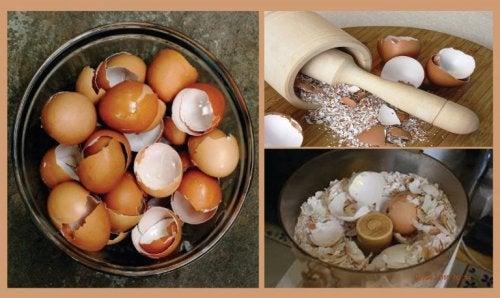 Яичная скорлупа и 6 натуральных средств на ее основе