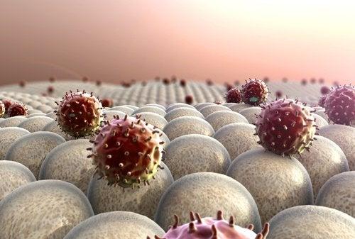 Рак и химиотерапия
