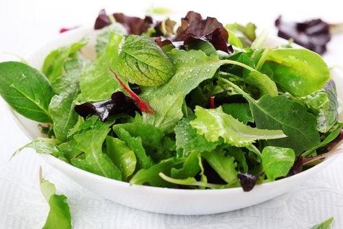 Повышенная кислотность желудка и зеленые салаты
