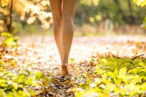 Натуральные средства помогут в лечении эндометриоза
