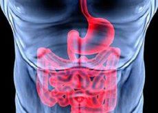 Пищеварительная система и эмоции