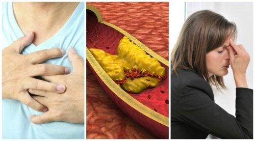 Симптомы повышенного холестерина в крови у женщин и мужчин