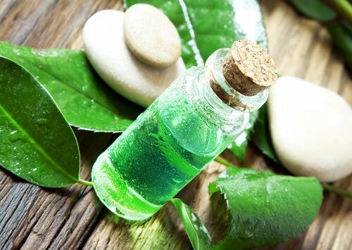 Масло чайного дерева поможетизбавиться от вшей