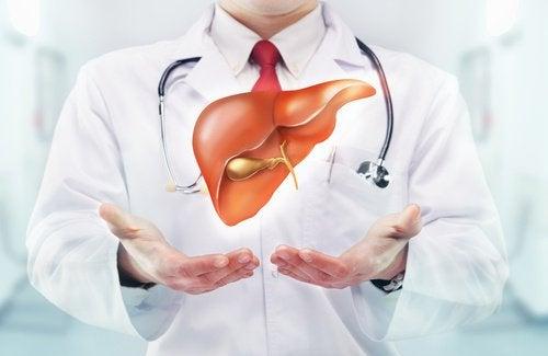 Холестерин поступает в организм с жирной пищей и образуется в печени
