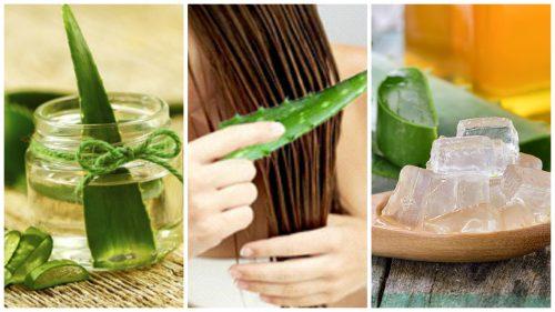 5 средств на основе алоэ вера, которые помогут укрепить волосы