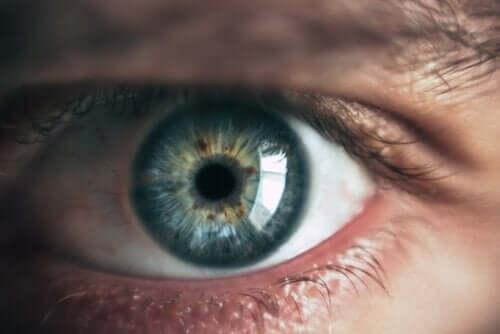Что цвет глаз может рассказать о вас?