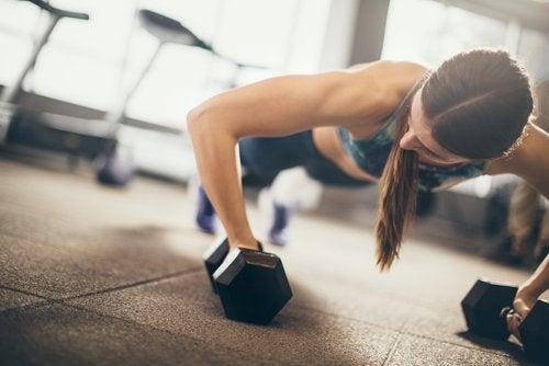 Метаболизм и мускулатура
