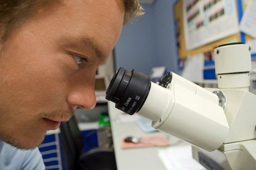 ВИЧ и новейшие исследования