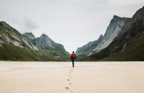 5 стратегий, которые помогут найти свой жизненный путь