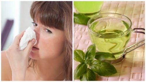 5 натуральных средств для борьбы с насморком