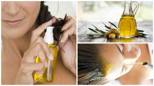 Оливковое масло для красоты волос: 6 способов использования