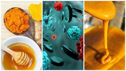 Приготовь домашний антибиотик, и инфекции будут обходить тебя стороной!