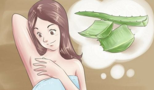 Натуральный дезодорант: 5 ингредиентов, которые избавят подмышки от неприятного запаха