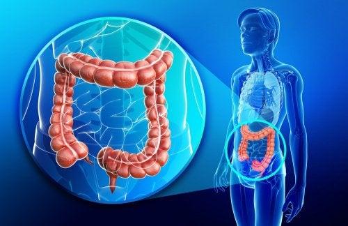 Побочные эффекты медицинских препаратов и газы в кишечнике