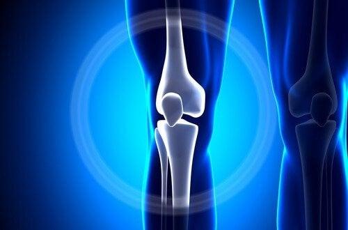 состояние костей и дефицит магния
