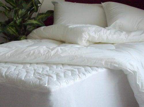 Научитесь правильно дезинфицировать подушки и матрас!