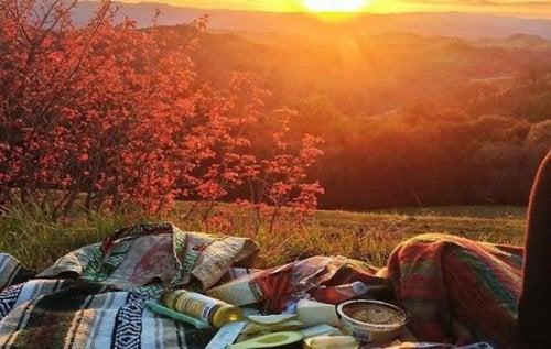 Пикник на природе и душевное состояние