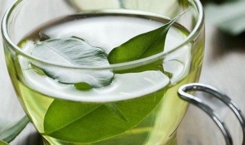 Рак кожи и зелёный чай
