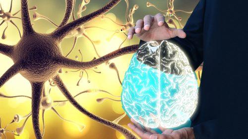 """Как """"разбудить"""" блуждающий нерв и улучшить своё самочувствие?"""