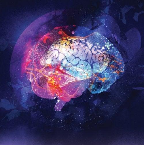 Мозг и нейрогенез