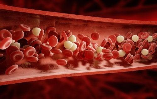 Массаж сухой щёткой и кровообращение