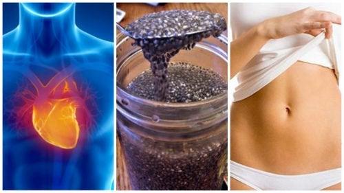 8 доводов в пользу того, чтобы включить в свою диету семена чиа