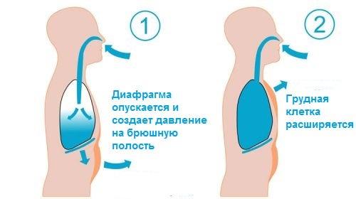 Брюшное дыхание и дыхательные техники