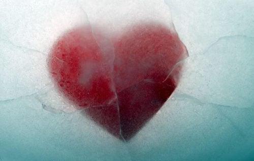 Разбитое сердце не убивает - оно учит нас жить дальше!