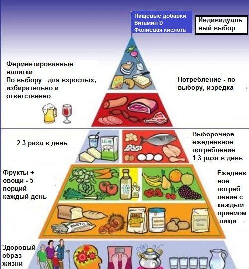 Новая пищевая пирамида: узнайте о ней больше!
