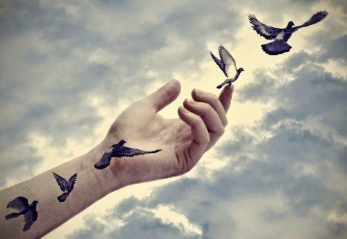 Рука и птицы