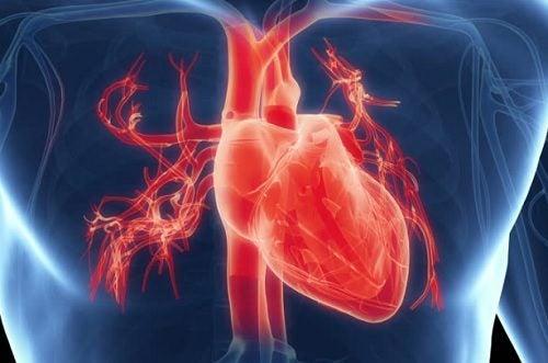 Проблемы с сердцем: 7 важных симптомов
