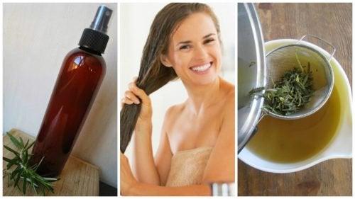 Хочешь укрепить волосы? Попробуй этот кондиционер на базе трав и уксуса!